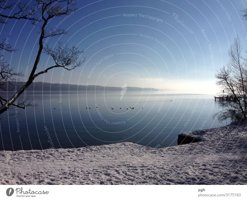 Fog over Lake Starnberg Sun Winter Ice Frost Lakeside Deserted Navigation Water Breathe Think Going Looking Hiking Free Beautiful Blue White Discover Relaxation