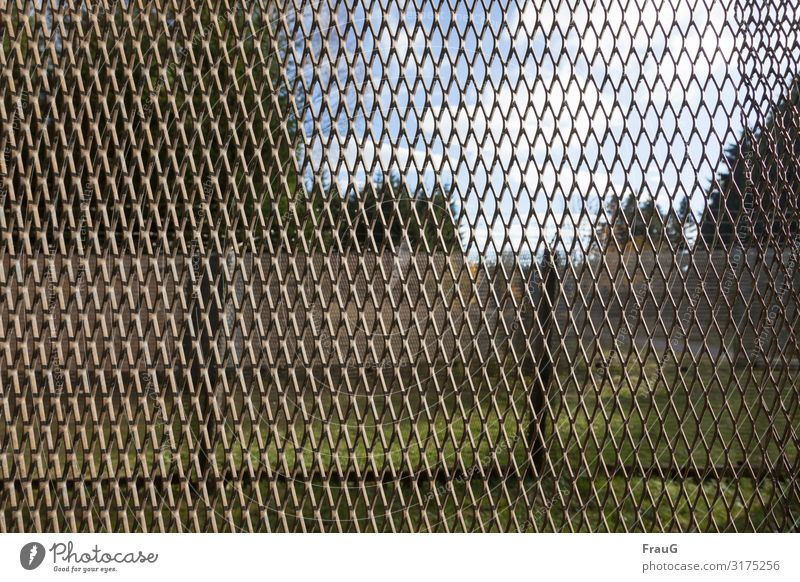 Iron curtain Deserted Fence Border Metal Historic Longing Threat Divide Past border fence Barrier Bans expanded metal History book Colour photo Exterior shot