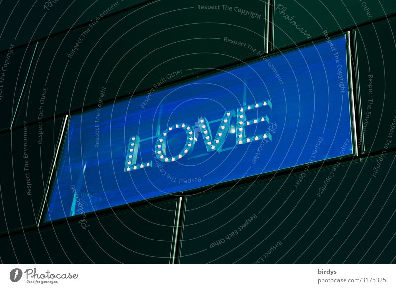 Digital Love Facade Window LED Characters Illuminate Authentic Exceptional Modern Positive Town Blue Yellow Black Lust Sex Longing Design Eroticism Society