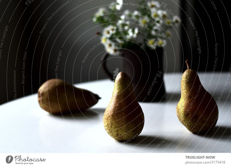 Two upright and one lying abate pear on a white round table with a brown mug, in which small white flowers in front of a grey wall catch the daylight coming in from the side