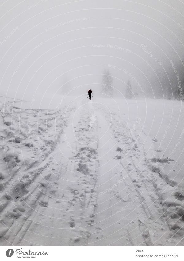 Human being Nature Man Landscape Relaxation Loneliness Calm Winter Mountain Adults Life Cold Snow Sports Movement Moody