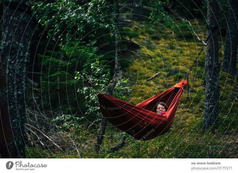 no trees, no hammock Environment Nature Landscape Plant Climate Climate change Moss Forest Breathe To enjoy Hang To swing Sleep Dream Sustainability Natural