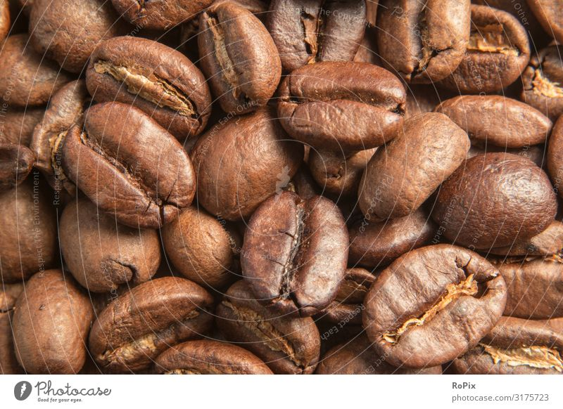 Close up of coffee beans. Beverage Hot drink Coffee Latte macchiato Espresso arrabica robusta Beans Lifestyle Style Design Healthy Healthy Eating Harmonious
