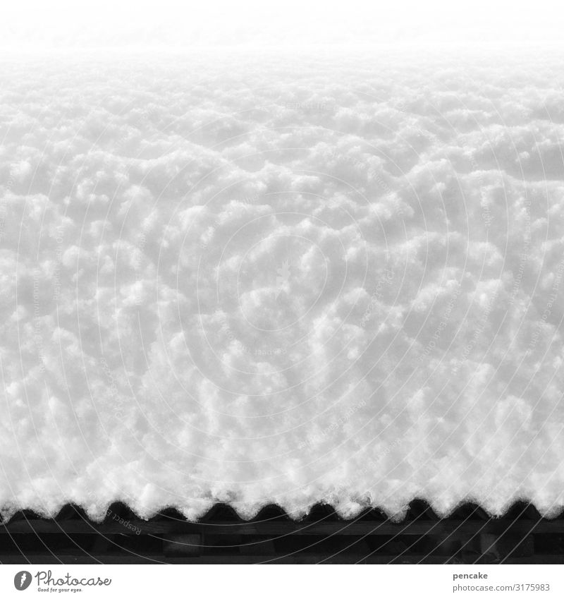 white skirt Nature Winter Snow Hut Roof Esthetic Threat Bright Cold Snow layer Black & white photo Exterior shot Close-up Detail Structures and shapes Deserted