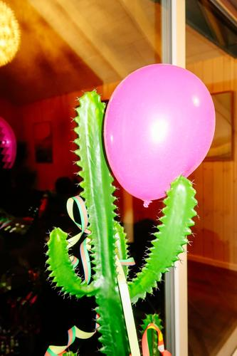 End of the party Night life Feasts & Celebrations Cactus Artificial plant Decoration Balloon Kitsch Odds and ends Plastic Catch To hold on Threat Trashy Crazy