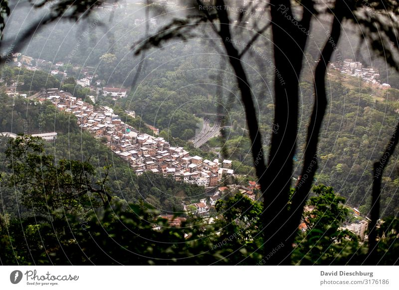favela Vacation & Travel City trip Nature Landscape Plant Tree Town Outskirts Overpopulated House (Residential Structure) Hut Poverty Luxury Living or residing