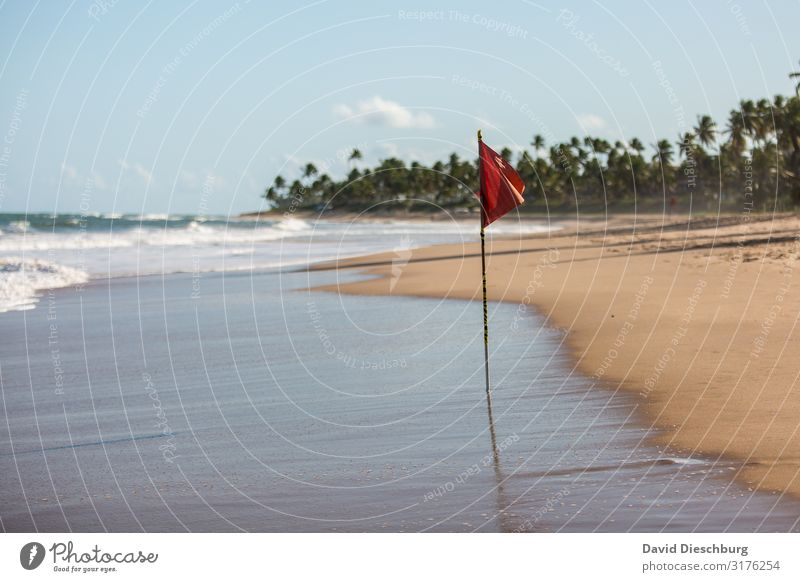 ATTENTION: Red flag Vacation & Travel Summer vacation Sunbathing Nature Landscape Sand Sky Clouds Spring Beautiful weather Waves Coast Beach Bay Ocean Island