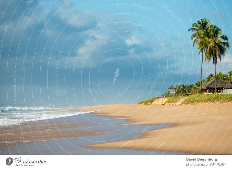 sandy beach Vacation & Travel Tourism Far-off places Summer vacation Sunbathing Nature Landscape Sky Clouds Spring Beautiful weather Waves Coast Beach Ocean