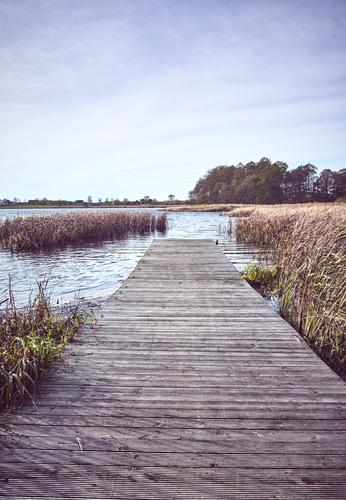 Retro toned picture of a wooden pier by lake in Autumn Sky Vacation & Travel Nature Landscape Relaxation Calm Far-off places Wood Tourism Freedom Lake