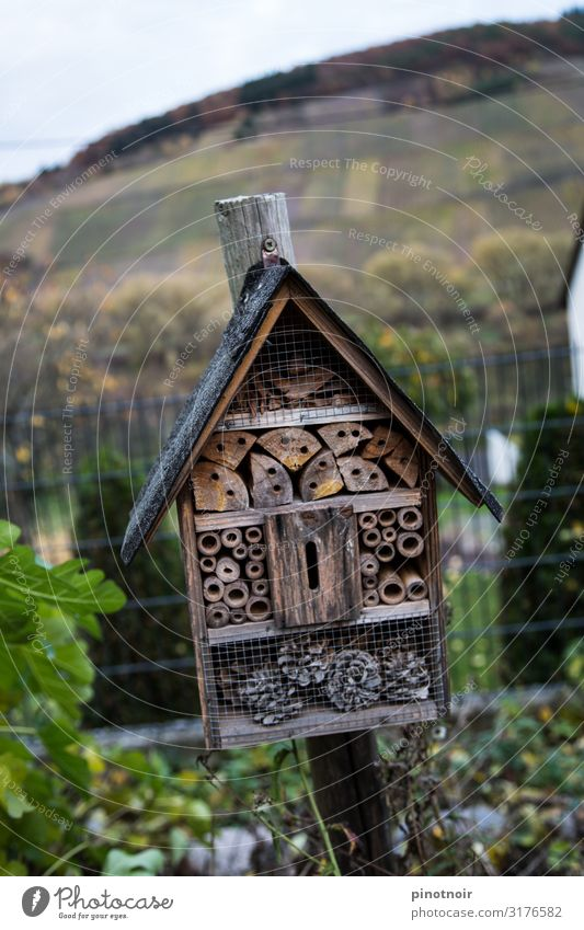 insect hotel Handicraft Home improvement Flat (apartment) House (Residential Structure) House building Moving (to change residence) Interior design Environment