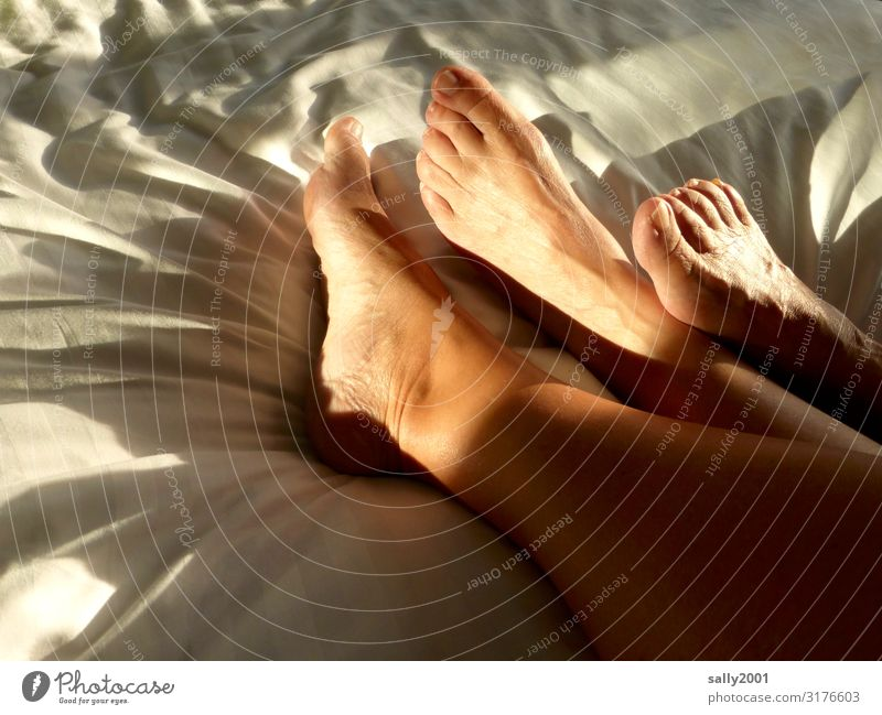 Skin thing   footrest... Living or residing Bed Bedroom Feminine Friendship Couple Feet 2 Human being Touch Relaxation Communicate Lie Esthetic Eroticism