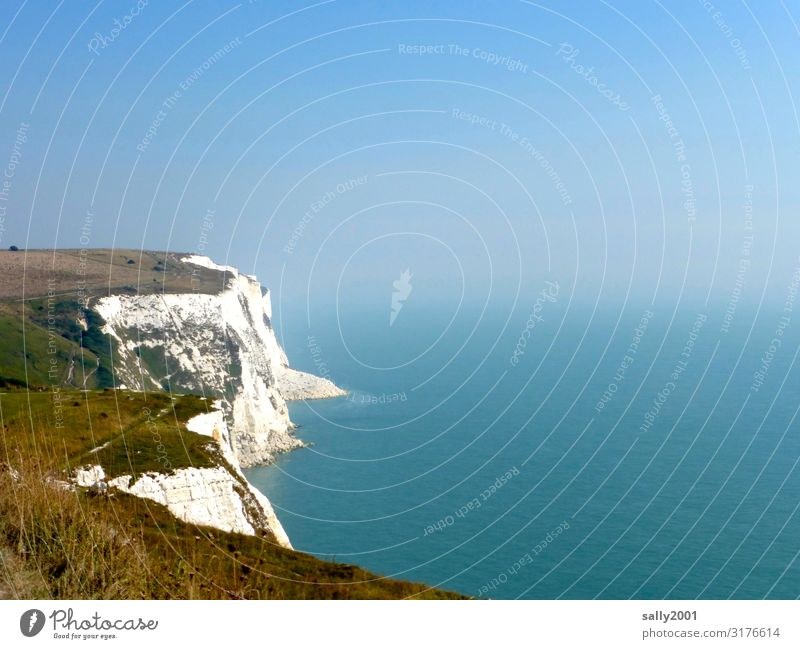 the white cliffs... Cliff White Dover Kent England Great Britain Coast Deserted Ocean English Channel Sky Nature Limestone rock Beautiful weather brexite