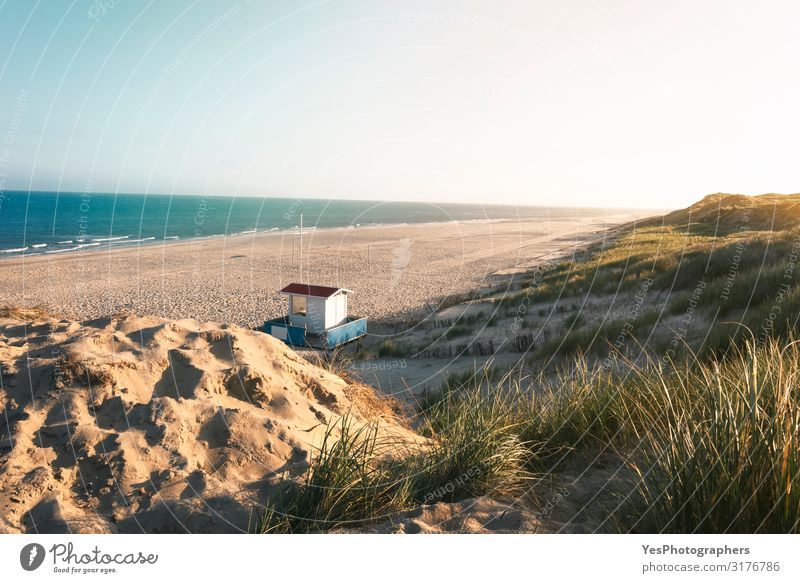 Summer beach and dunes landscape. Sunny beach day at North Sea Vacation & Travel Summer vacation Nature Landscape Sand Climate change Beautiful weather Hill