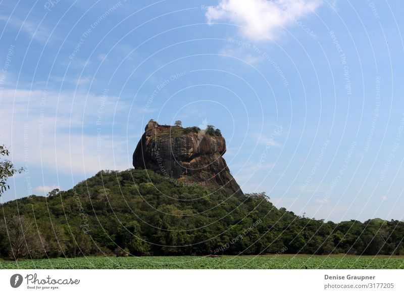 The Lion Rock on Sri Lanka UNESCO World Heritage Site Vacation & Travel Tourism Expedition Environment Nature Landscape Climate Beautiful weather Wall (barrier)