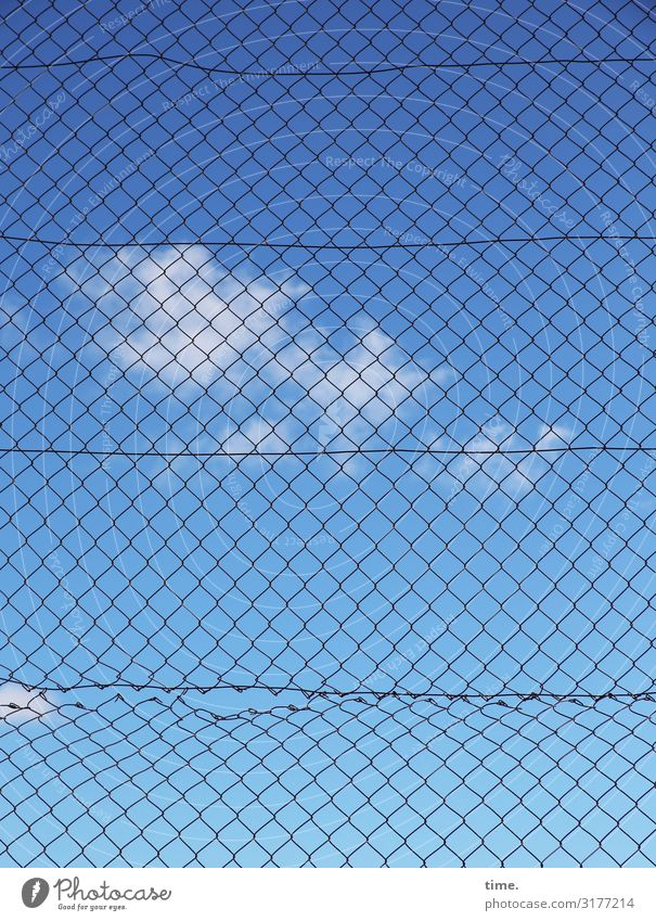 Stories from the fence (III) Sky Clouds Beautiful weather Fence Wire netting fence Metal Line Net Network Broken Trashy Blue Safety Protection Life Orderliness