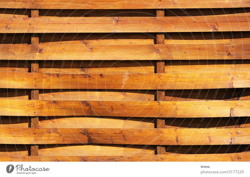 Stories from the fence (6) Fence Screening Plaited Wood Line Stripe Yellow Safety Protection Orderliness Curiosity Interest Design Resolve Contentment