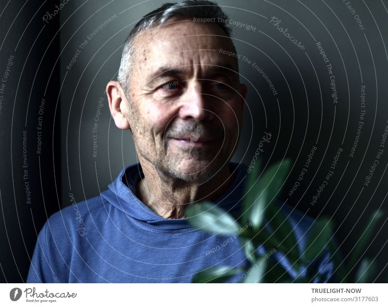 Man Old Blue Green Black Face Life Senior citizen Natural Happy Head Brown Think Contentment Dream Power