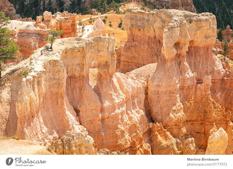 Hoodoo formation at Bryce Canyon National Park, Utah Vacation & Travel Mountain Nature Landscape Sky Rock Monument Stone Gold Red Serene Amphitheatre national