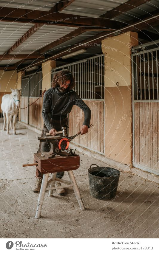 Blacksmith forging horseshoe near stable farrier Forge Horseshoe Stable Ranch Anvil Craft (trade) Iron Hammer tongs Hot Man Adults Professional Barn Farm Stall