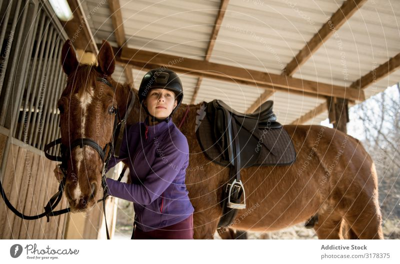 Woman and girl brushing horse Girl Horse Bridle Stable Stall Lessons Horseback riding Ranch Animal Youth (Young adults) Child Considerate Equipment
