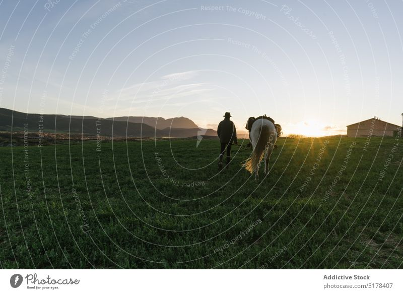 Old man on horse in field Man Horse Field Landscape Rider Nature Sky Beautiful weather Blue Woman Sunbeam Day Lifestyle Leisure and hobbies Freedom
