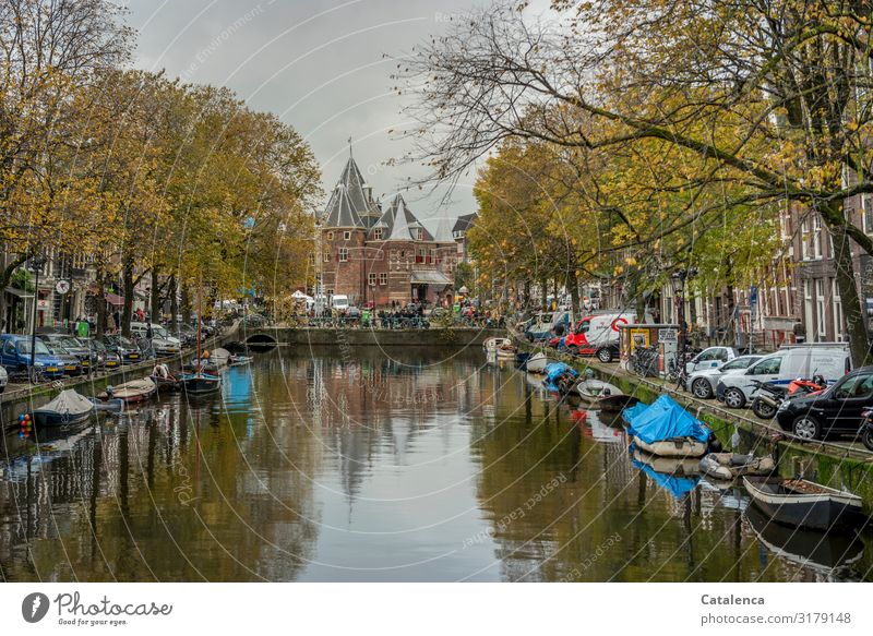 November in Amsterdam Landscape Plant Sky Clouds Autumn Bad weather Tree Netherlands Town Old town Populated House (Residential Structure) Church Building