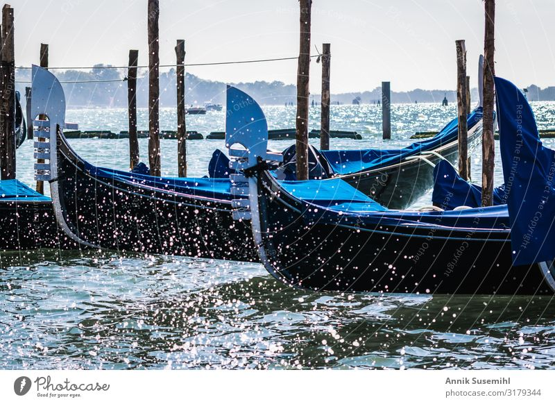 Gondolas in Venice in the Markus Basin Vacation & Travel Tourism Trip Sightseeing City trip Cruise Water Drops of water Climate Climate change Waves Ocean