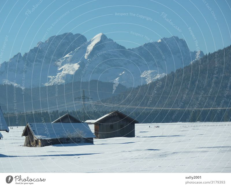 winter wonderland Landscape Cloudless sky Winter Beautiful weather Snow Alps Mountain Cold Contentment Loneliness Relaxation Idyll Nature Far-off places Bavaria
