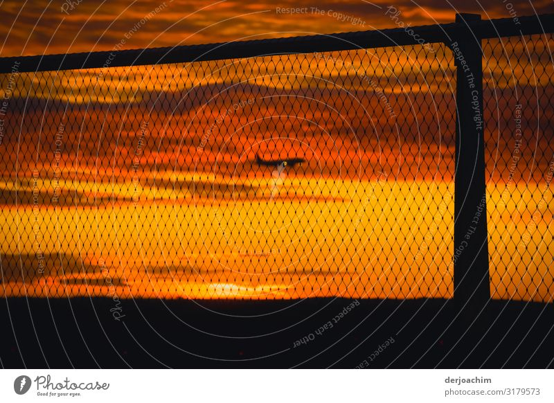 On approach Joy Relaxation Trip Services Aviation Environment Sunrise Sunset Autumn Beautiful weather Airport Frankfurt Hesse Germany Outskirts Passenger plane