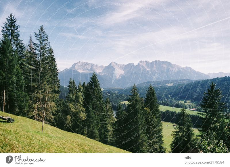 Vacation & Travel Nature Summer Plant Blue Green Landscape Tree Far-off places Mountain Environment Meadow Tourism Trip Leisure and hobbies Hiking