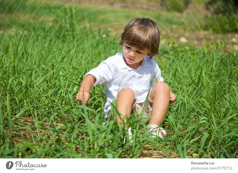 Pretty boy sitting on grass Lifestyle Leisure and hobbies Vacation & Travel Freedom Summer vacation Child Human being Masculine Boy (child) Infancy 1