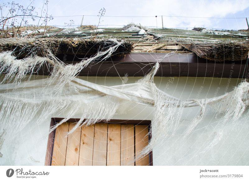frazzle Sky House (Residential Structure) Winter Door Broken Roof Rügen Scrap of fabric lost places