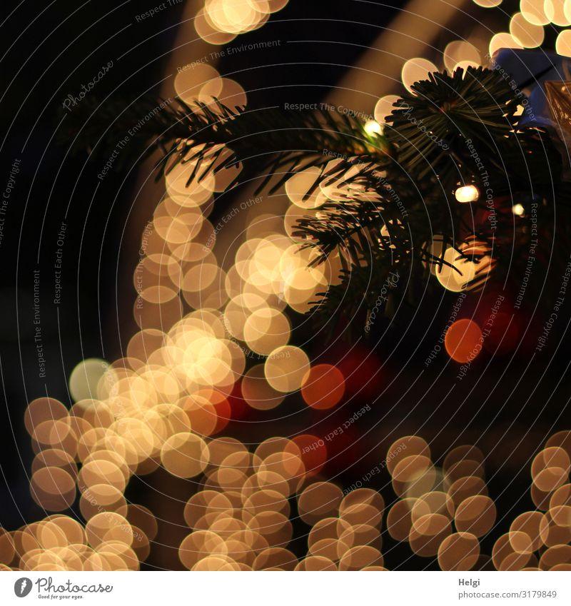 Christmas & Advent Calm Winter Dark Black Yellow Feasts & Celebrations Exceptional Orange Moody Illuminate Glittering Idyll Creativity Uniqueness Irritation