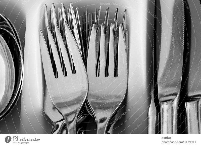 fork, knife, spoon Nutrition Cutlery Knives Fork Spoon Clean Silver White High-grade steel Silverware box Point xenias Subdued colour Studio shot Close-up