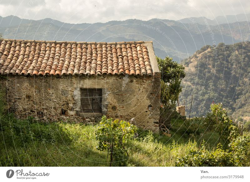 cottages Nature Landscape Sky Grass Bushes Garden Meadow Hill Mountain Sicily Italy Village Hut Wall (barrier) Wall (building) Window Roof Authentic Beautiful