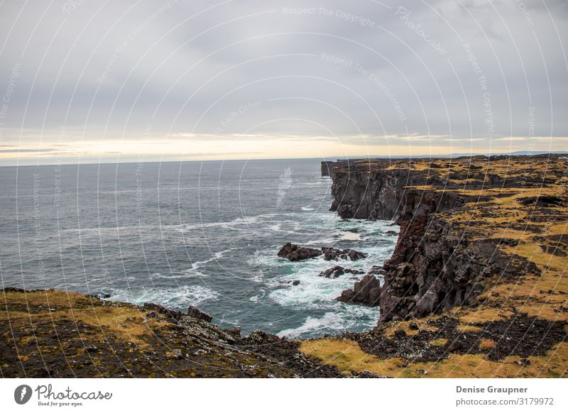 rough rugged coastline in Iceland Summer Environment Nature Landscape Clouds Climate Bad weather Vacation & Travel Surrealism mountain Scandinavia water Europe