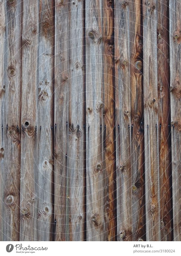 not just a board Agriculture Forestry Craft (trade) Hut Manmade structures Facade Scales Wood Brown Colour photo Subdued colour Exterior shot Deserted