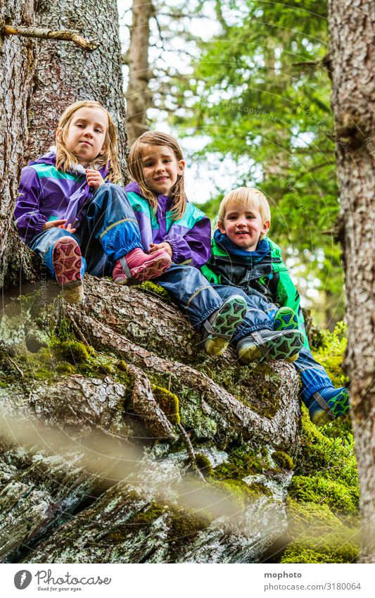 Three children in the forest, portrait Happy Contentment Playing Vacation & Travel Trip Mountain Hiking Girl Boy (child) Brothers and sisters Sister
