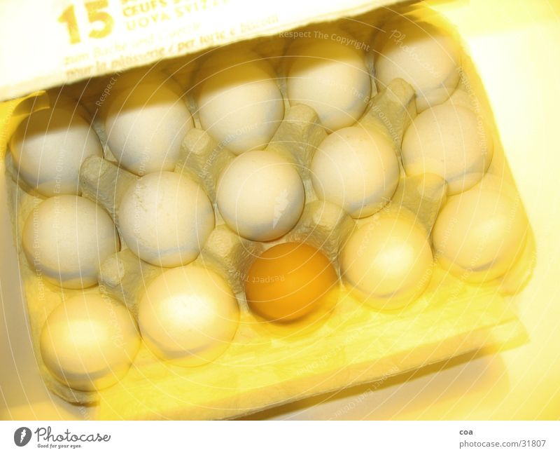 Yellow Movement Brown Egg Caution Fragile 15 Outsider