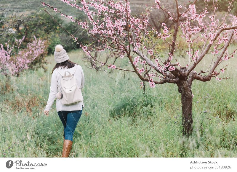 Anonymous woman walking near blooming tree Woman Tree Flower Walking Landscape Spring Vacation & Travel Nature Leisure and hobbies Lifestyle Trip Hiking