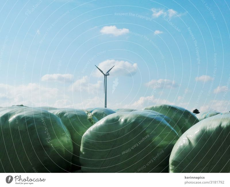 silage Agriculture Forestry Advancement Future Wind energy plant Silo Environment Nature Air Sky Sustainability Environmental protection Colour photo