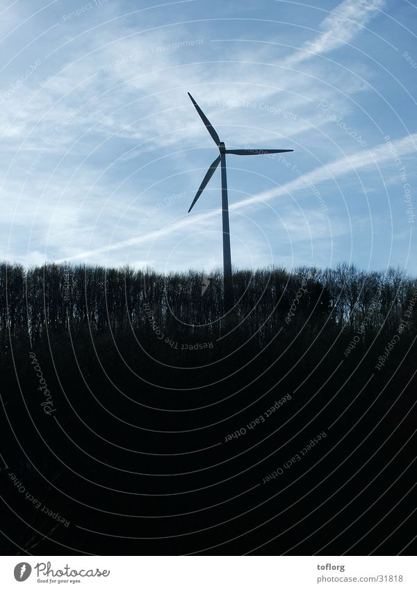 windmill Forest Individual Industry Renewable energy Power Sky Graffiti