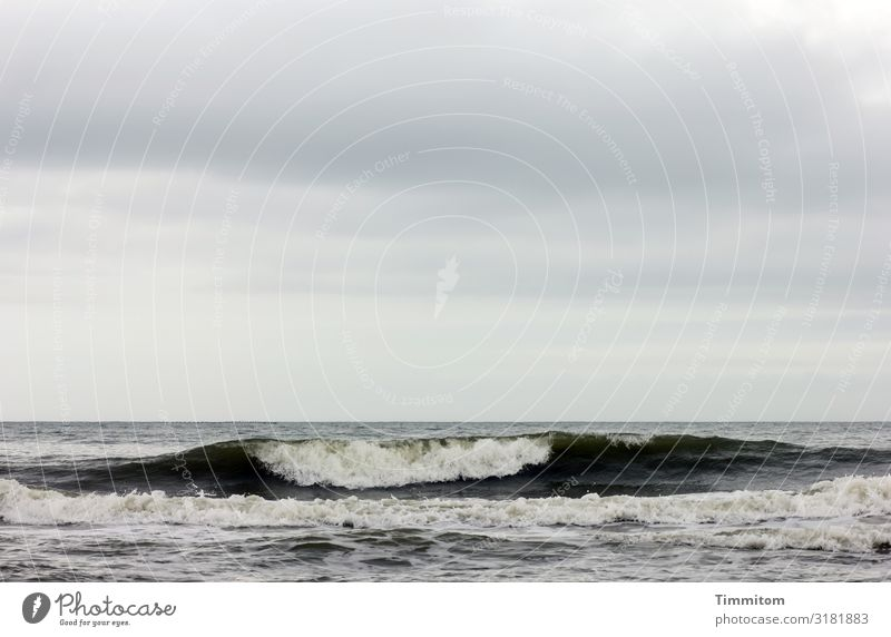 North Sea, sky and dark wave Sky Swell Water White crest Denmark Clouds Waves Deserted Exterior shot Nature Elements Blue Gray Black Horizon