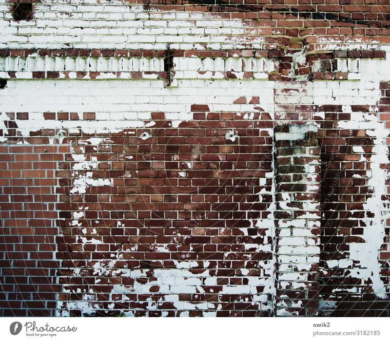 psoriasis Building Barn Wall (barrier) Wall (building) Brick Brick wall Old Decline Transience Destruction Ravages of time Dye Flake off wall frieze