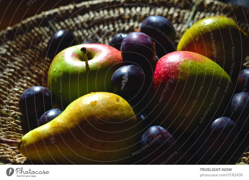 Organic vitamins: Basket with fruits Food Fruit Apple Pear Plum Nutrition Organic produce Vegetarian diet Diet Summer Autumn Friendliness Happiness Fresh