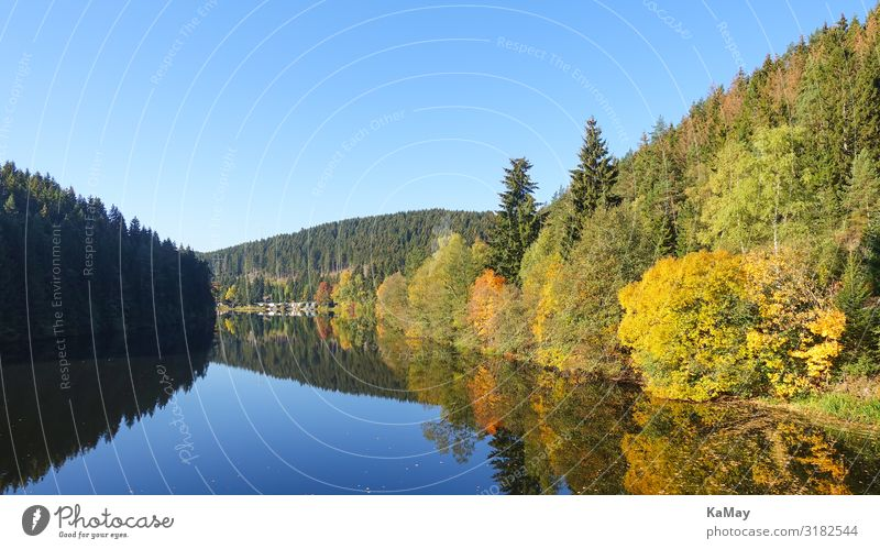 Okerstausee in autumn Nature Landscape Water Autumn Climate change Tree Leaf Forest Mountain Harz Lake Oker reservoir Reservoir Lower Saxony Germany Europe Blue
