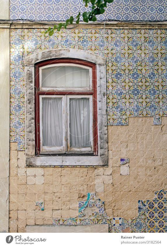 Windows on weathered wall with tiles in Lisbon City trip Portugal Downtown Old town Wall (barrier) Wall (building) Facade Tile Stone Glass Retro Multicoloured