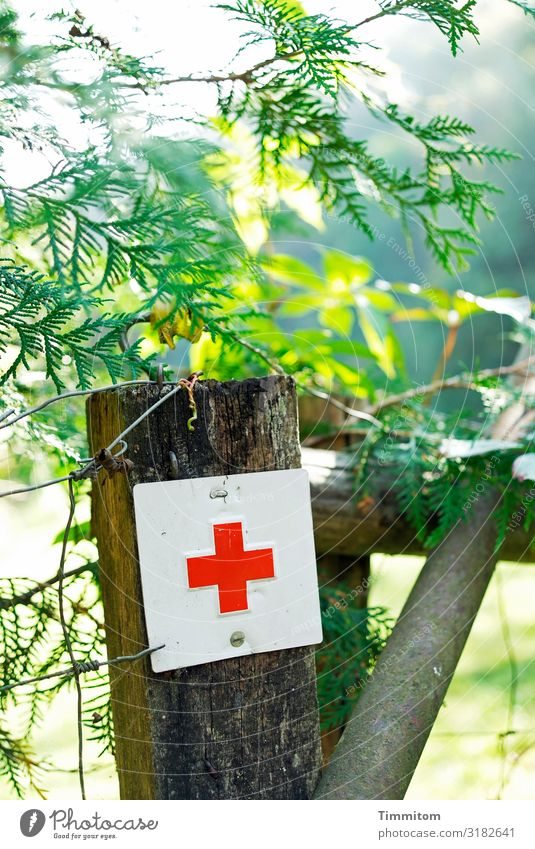 Red Cross Vacation & Travel Environment Nature Beautiful weather Plant Meadow Metal Sign Green White Emotions Help Safety Pole Fence Colour photo Exterior shot