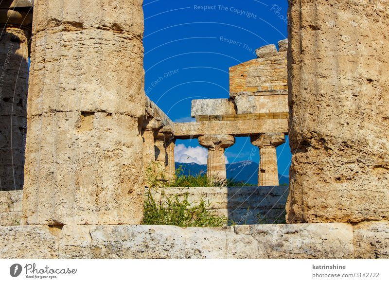 The greek Temple of Athena. Paestum, Italy Vacation & Travel Tourism Art Culture Park Ruin Architecture Stone Old Religion and faith Poseidonia Acropolis Greek
