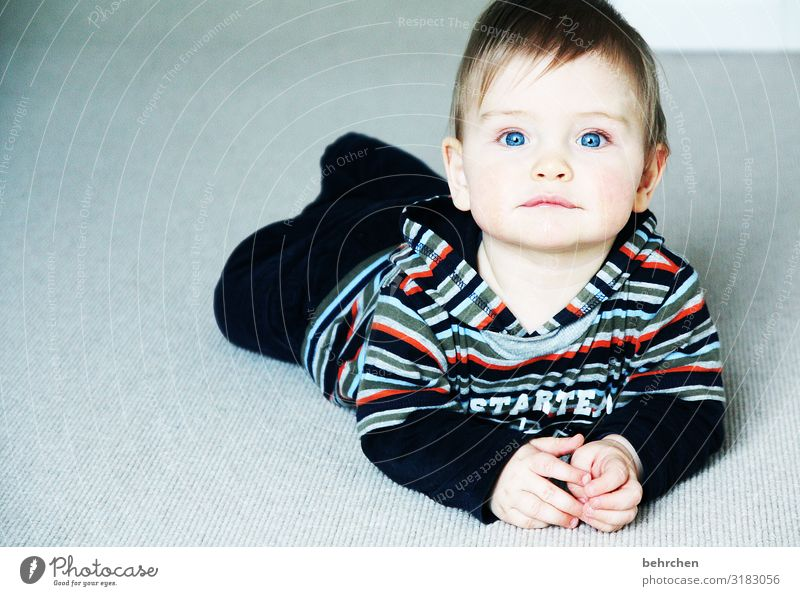 so, what's happening today? expectant observantly inquisitorial Curiosity guard sb./sth. Trust Child Son Crawl Marvel blue eyes Baby Infancy Family & Relations